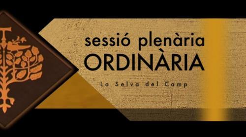 Canal Camp Plenaris