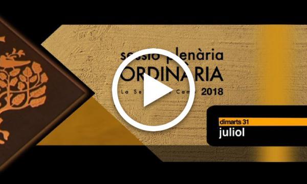 Ple ordinari 31/07/2018 (Part 1)