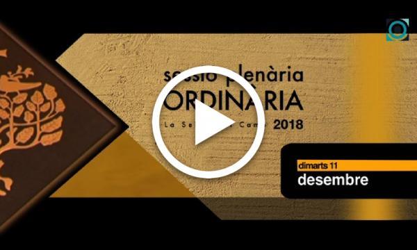 Ple ordinari 11/12/2018 (Part 1)