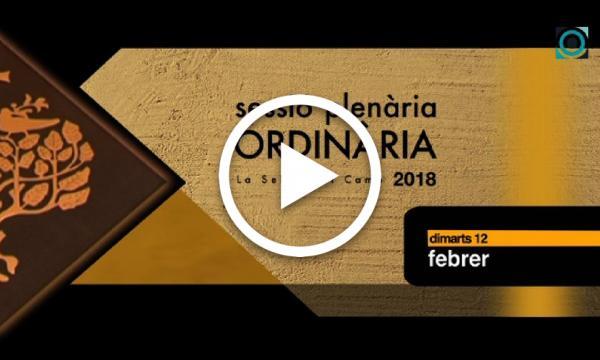 Ple ordinari 12/02/2019 (Part 1)